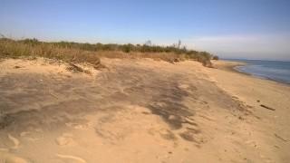 sabbia nera Metaponto novembre 2015 - tra la foce del Basento ed il Lido Torre Mare